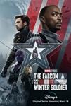 disney+,the falcon and the winter soldier,sebastian stan,winter soldier,the falcon,falcon,le faucon,bucky,bucky barnes,marvel,univers marvel,avengers,vengeurs,baron zemo